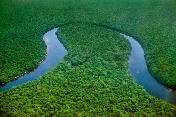 Бассейна Реки Конго