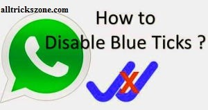 disable blue ticks