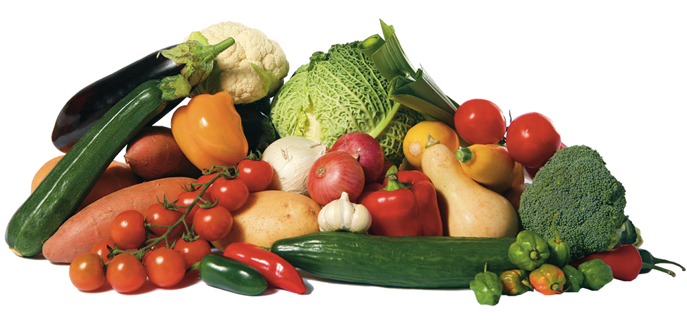 A big display of healthy vegetables isolated on white, including savoy cabbage, cauliflower, vine tomatoes, flow tomatoes, broccoli, green courgette, yellow courgette, jalapeno peppers, leeks, sweet potato, potato, aubergine or eggplant, garlic, red and white onions, butternut squash gourd and miniature peppers.