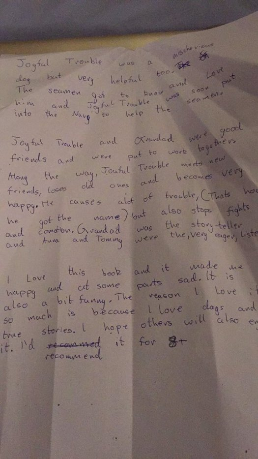 Joyful Trouble Review by 10 years old E from Ireland