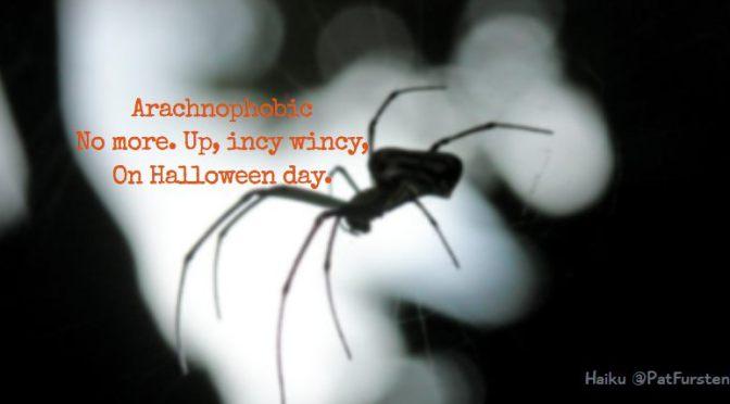 Arachnophobic, Halloween Haiku via @PatFurstenberg #haiku #halloween