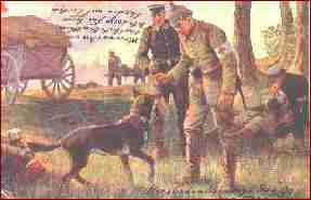 Why dogs Were so indispensable during warfare AND how dog training began. German Imperial Army