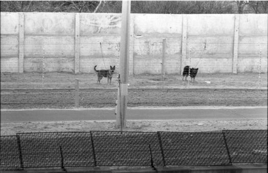 Berlin Wall, guard dogs kept on wires. Source: Historic Approaches to Sonic Encounter at the Berlin Wall Memorial