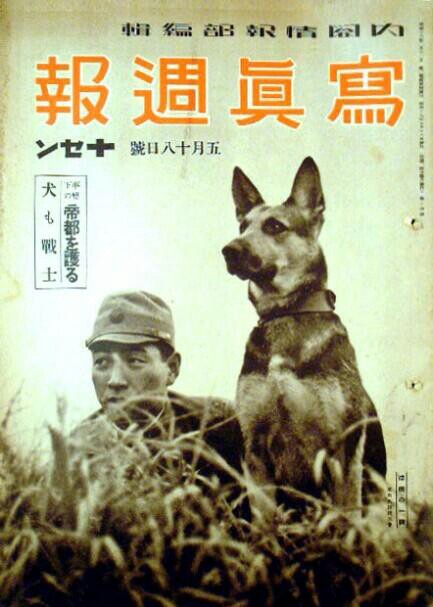 Japanese_dogs_WW2 propaganda. Source WW2 Film Inspector