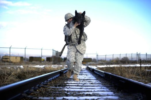 Training together: Staff Sgt. Erick Martinez, a military dog handler uses an over-the-shoulder carry to hold his dog, Argo II, at Hill Air Force Base, Utah. The exercise helps build trust, loyalty, and teamwork. Source Foriegn Policy.