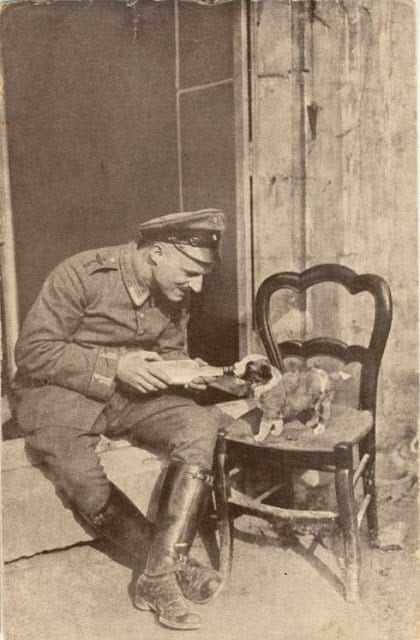 A German soldier feeds a puppy-History Collection.jpg