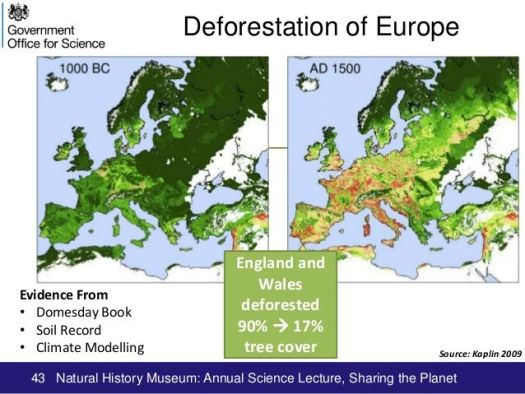 Medieval Europe deforestation. convents religious life medieval women