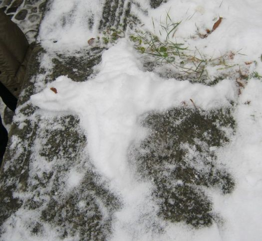 A Dragon of snow in Sighisoara