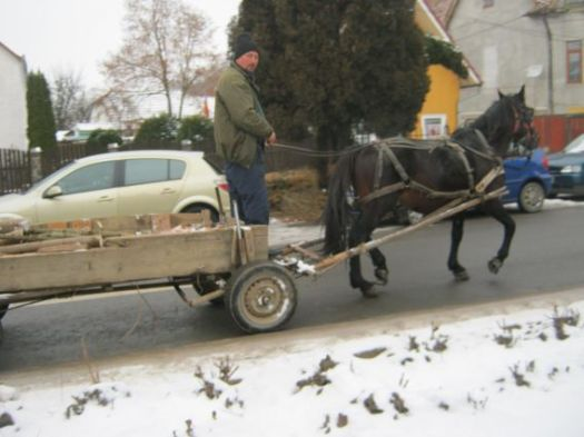 cart pulled by horse, rural Romania