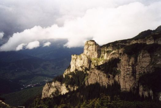 Myths Folklore Romanian Woods