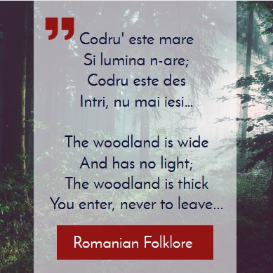 Romanian folk aphorism about trees and forest
