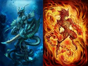 Water dragon and Fire dragon wallpaper 16752