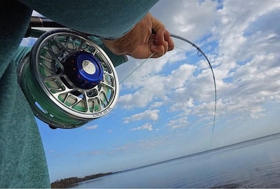 Up close fly reel click and pawl
