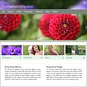 Webpage hosting