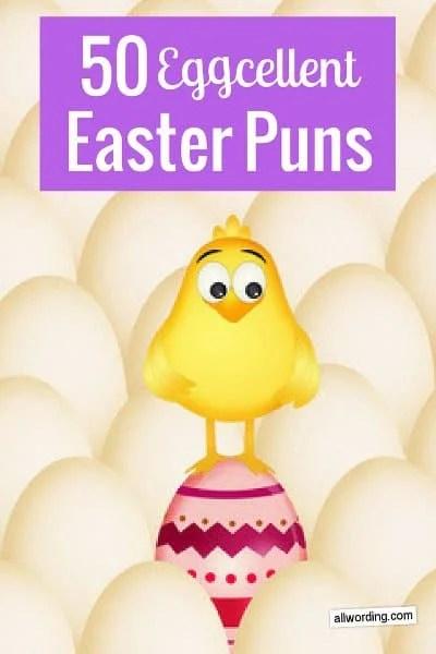 Funny Easter Captions : funny, easter, captions, Crack, AllWording.com