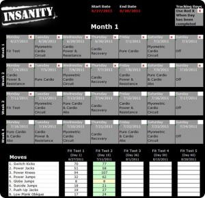 Insanity Workout Sheets Pdf