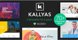 Read more about the article KALLYAS 4.18.0 Nulled – Creative eCommerce Multi-Purpose WordPress Theme