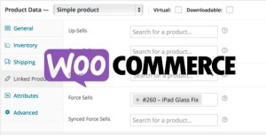 Read more about the article WooCommerce Force Sells 1.1.28
