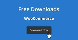 Read more about the article Free Downloads WooCommerce Pro 3.2.1 NULLED
