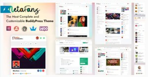 Read more about the article MetaFans 2.5 – Community & Social Network BuddyPress Theme