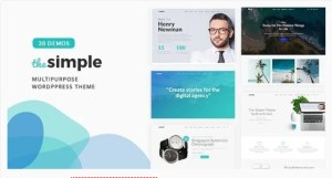 Read more about the article The Simple 2.7.1 – Business WordPress Theme