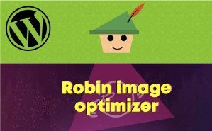 Read more about the article Webcraftic Robin Image Optimizer PRO 1.5.4 NULLED – WordPress Image Optimization