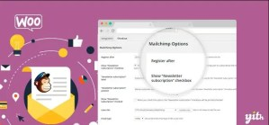Read more about the article YITH WooCommerce Mailchimp Premium 2.2.1