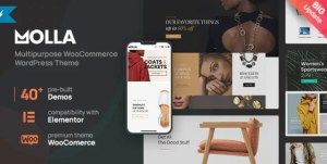 Read more about the article Molla 1.3.1 – Multi-Purpose WooCommerce Theme