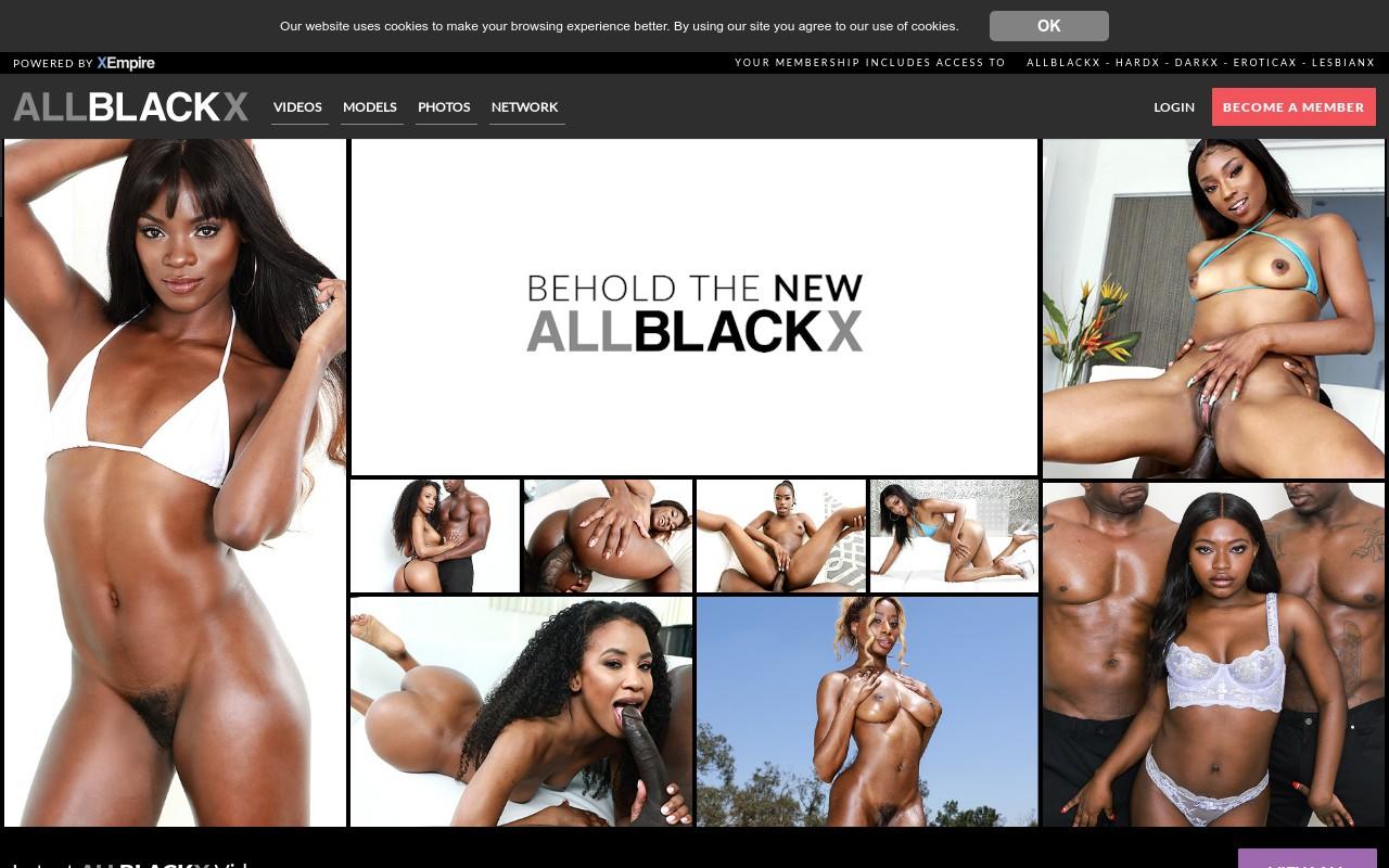 AllBlackX - Premium Black Porn Sites