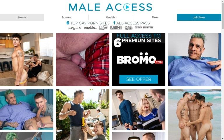Maleaccess - Premium Gay Porn Sites