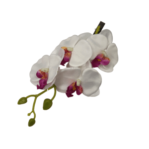 Butterfly Orchid Clip