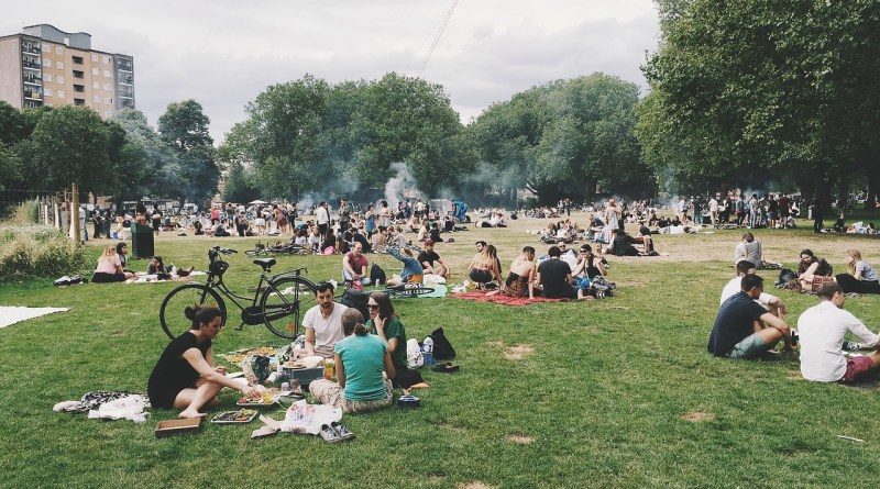 Brexit picnic