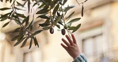 Olives: The Acceptable Face of Snacking
