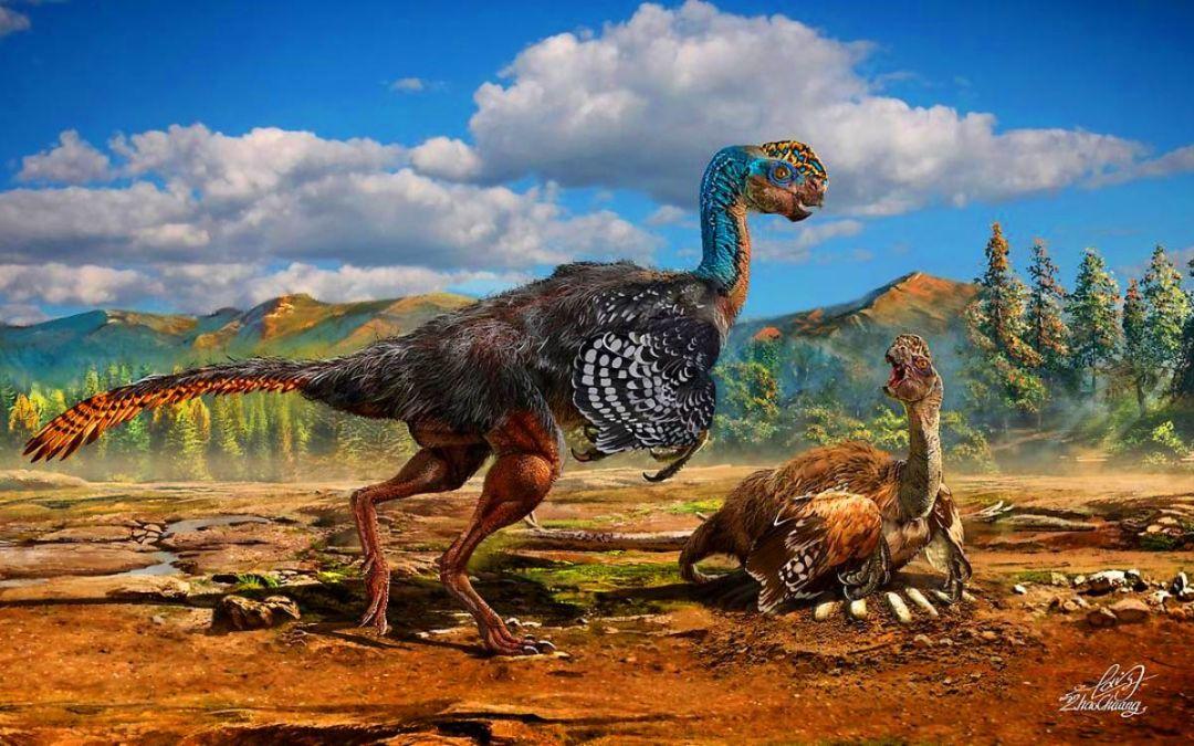 Dinosaures emplomallats: l'origen dels ocells