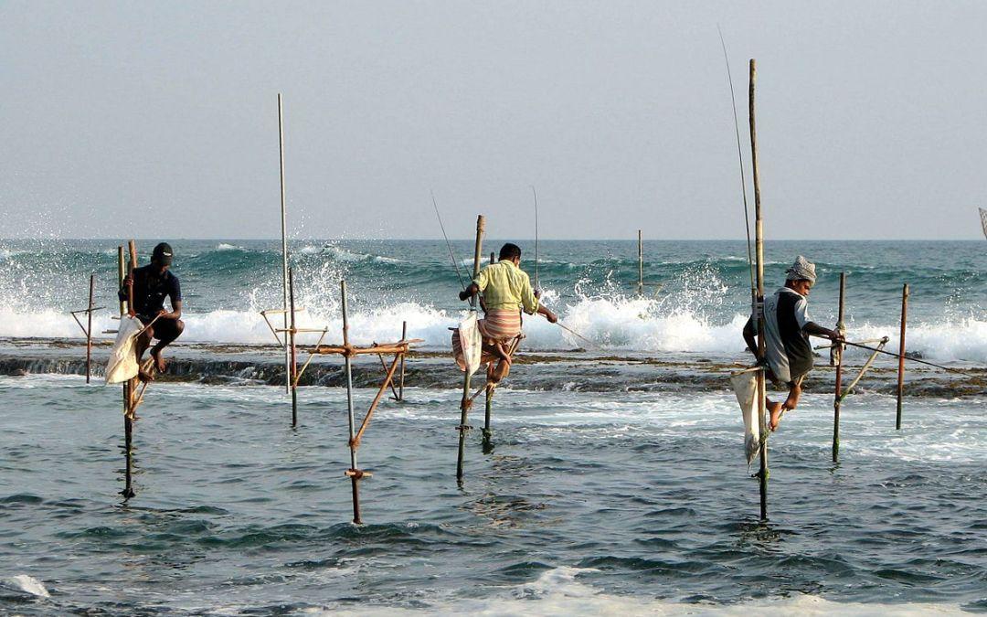 ¿Para qué necesitamos el mar?
