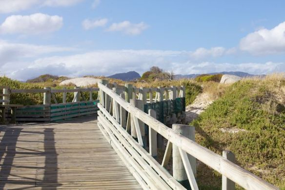 Boardwalk at Boulders Beach, Simon's Town, South Africa.  (c) Allyson Scott