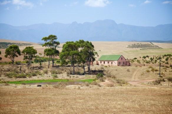 Farm along the Garden Route, South Africa  (c) Allyson Scott