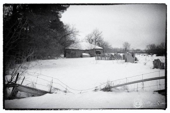 Derelict farm, Markham