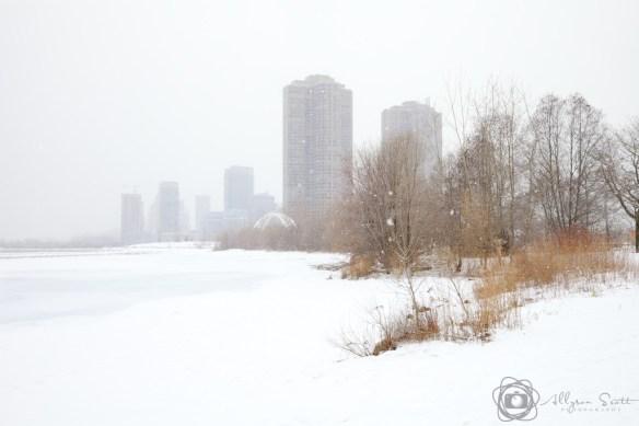 Lake Ontario frozen during snowstorm