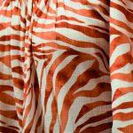 Zebra naranja