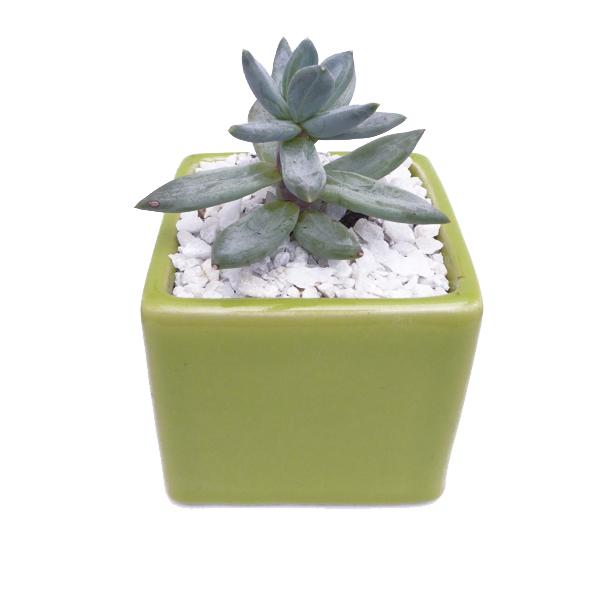 Cubo cerámica 8cm