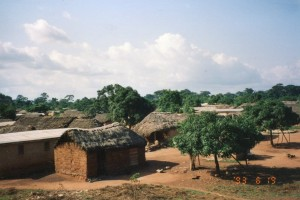 Asagbe overview - thatched roof houses and trees, 6-19-93