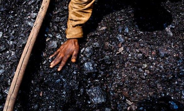 سيسكو ترانس تقتحم نشاط الفحم بـ الدخيلة جريدة المال