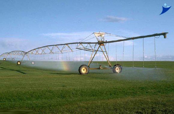 النصر لتصنيع الحاصلات الزراعية