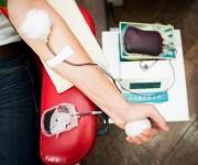ضباط وأفراد الأمن يشاركون في حملة للتبرع بالدم بأسيوط والأقصر (صور)