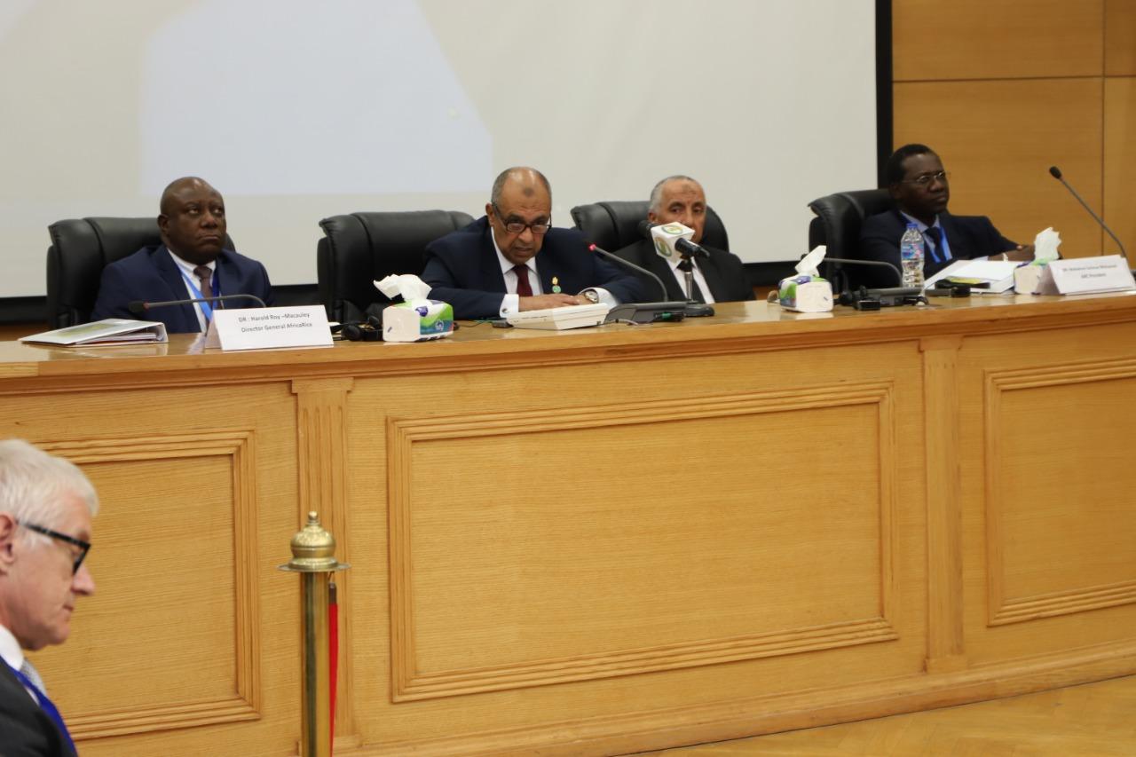 وزير الزراعة: إفريقيا تستورد 10 ملايين طن أرز سنويا - جريدة المال