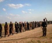 أوروبا تدفن رأسها في الرمال.. ترفض استعادة مقاتلي داعش (انفوجراف)