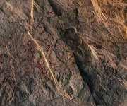 السياحة والآثار: الانتهاء من توثيق نقوش ملونة عثر عليها في كهف أثري (صور)