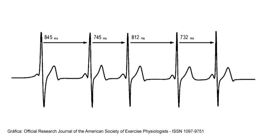 variabilidad-frecuencia-cardiaca-trail-runing-002