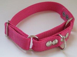 Collar semi ahorque regulable para perros reforzado